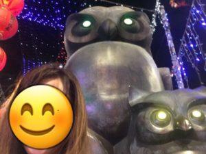 饒河観光夜市に置かれている大きなフクロウの置物