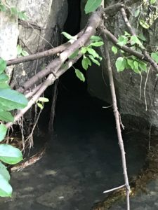 沖縄の天然記念物である塩川②