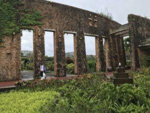 沖縄海洋博植物園の写真
